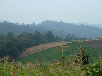 Soil Sustainability Research in Uganda