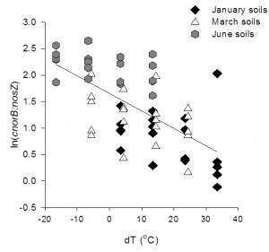 Ratio of cnorB:nosZ genes (nitroc oxide reductase : nitrous oxide reductase) in January, March, and June soils during incubations, as affected by incubation temperature.